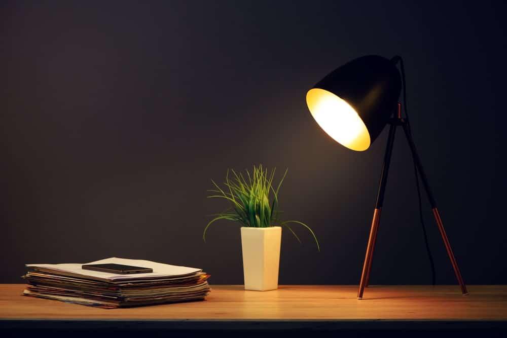 Đèn bàn trên bàn gỗ bên cạnh một nhà máy trong nhà và ngăn xếp giấy.